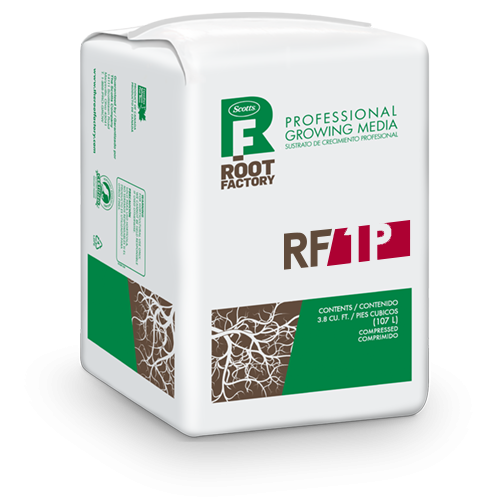 Root Factory 1P