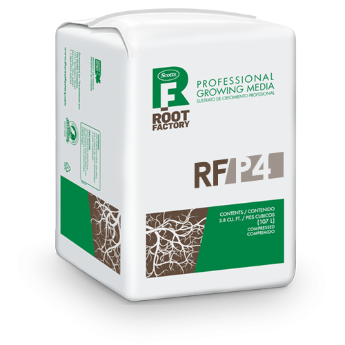 Root Factory P4